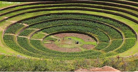 قیمت زمین کشاورزی در استرالیا